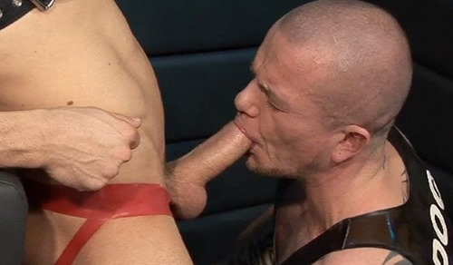 gay-guy-sucking-a-big-cock